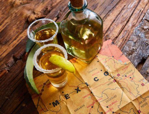 La Ruta del Tequila – Guía para realizarla por tu cuenta