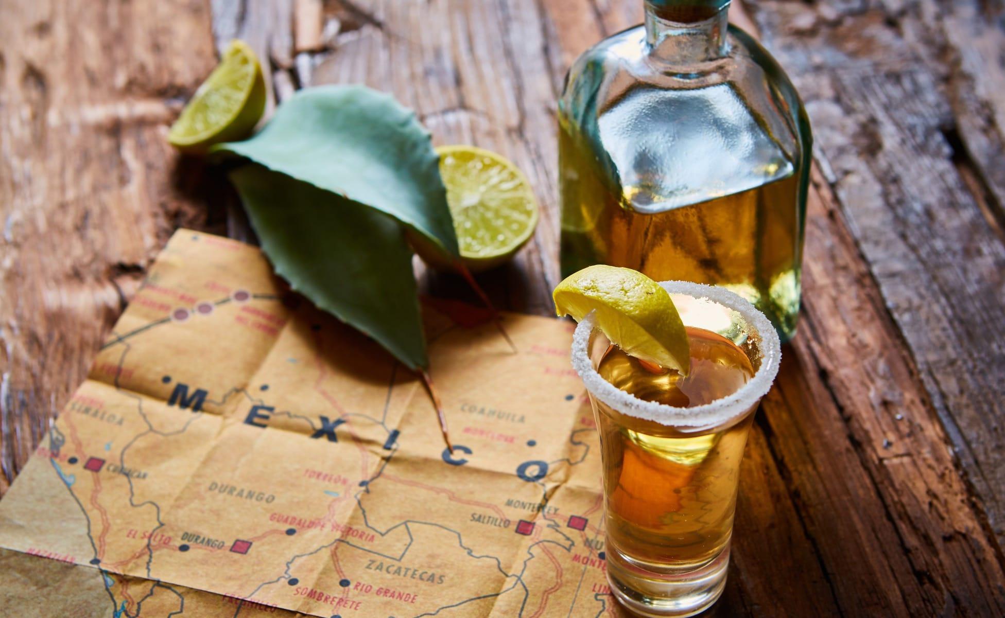 Turismo en Tequila Jalisco