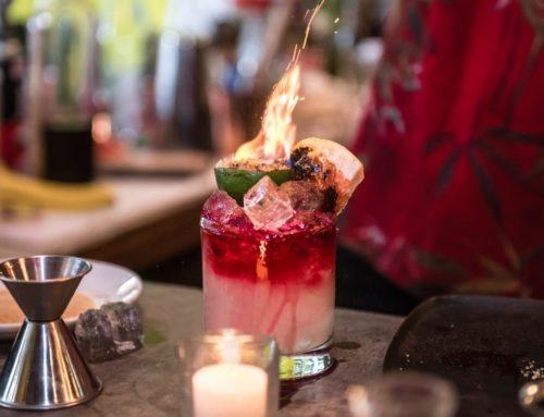 16 Recetas de bebidas exóticas con tequila