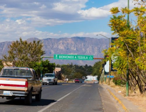 Cómo llegar a Tequila, Jalisco