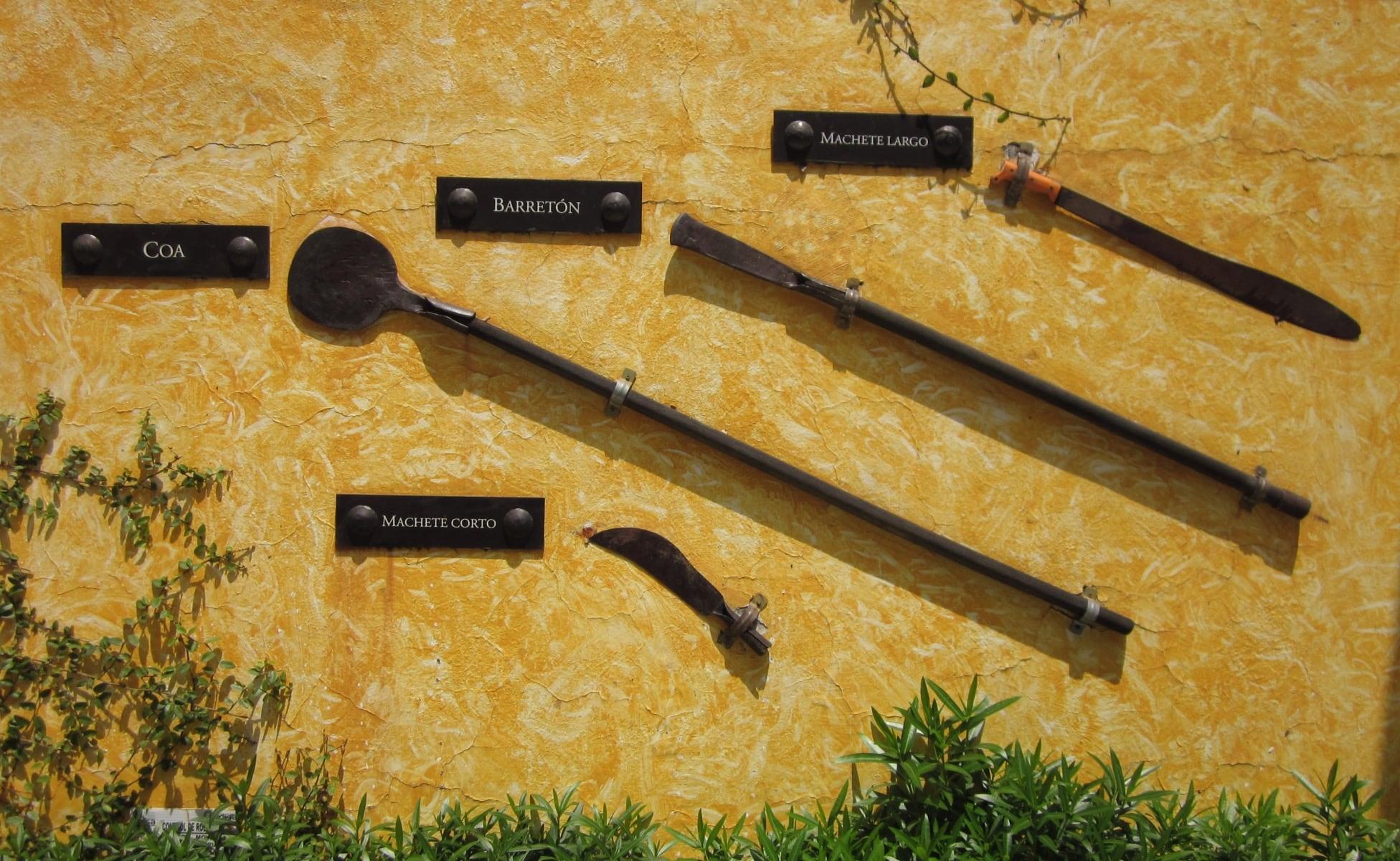 herramientas para cosecha del agave