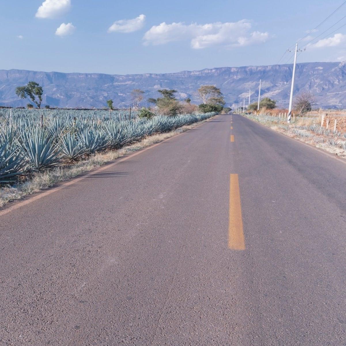 ruta del tequila en coche