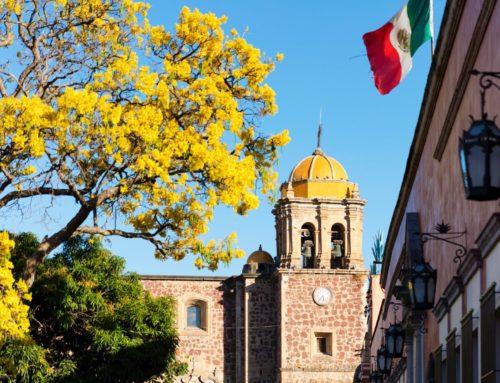 14 cosas que hacer en Tequila Jalisco