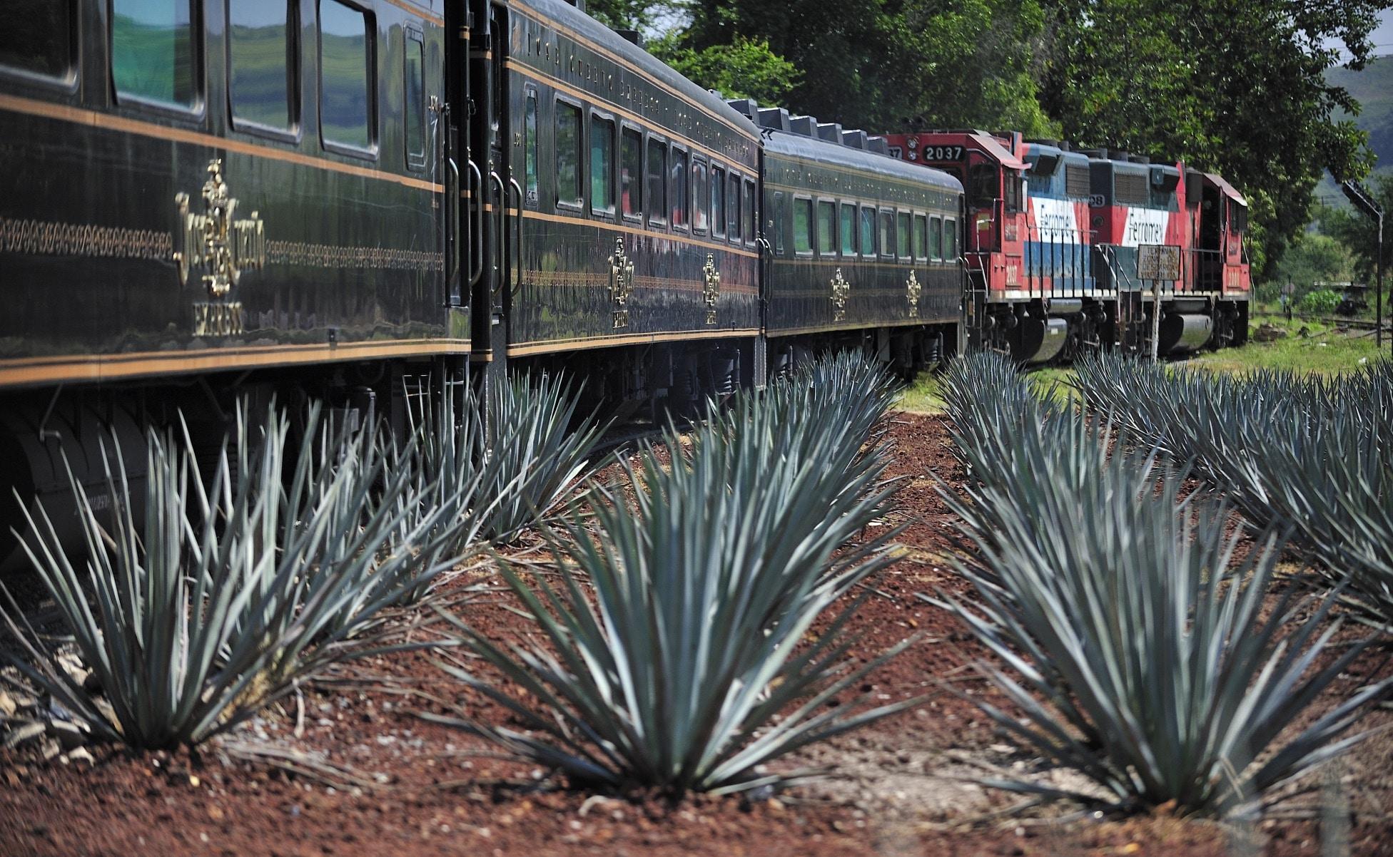 viaje tren tequila jalisco